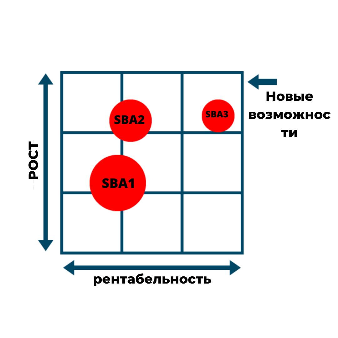Маркинвест, стратегические направления бизнеса, рост и прибыльность